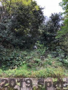 バウワンコ像