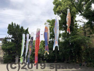本渡諏訪神社の鯉のぼり