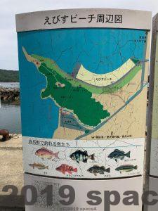 えびすビーチで釣れる魚
