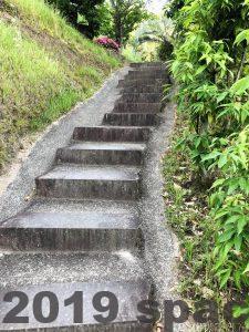 撮影スポットから左手に行くと階段があります